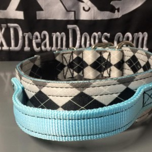 2 nylon collar with handle