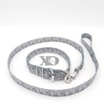 1 Collar Lead Set- Grey Paisley