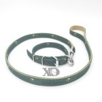 1 Collar Lead Set- Hunt Goals Green Outer- Tan Inner